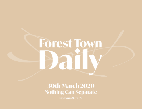 Forest Town Daily – Nothing Can Separate